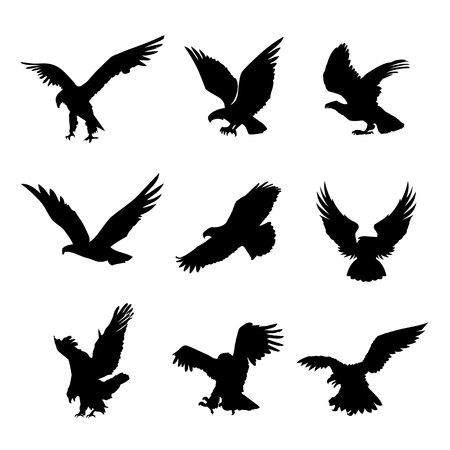 Águila Halcón Pájaro Halcón Silueta Animal Icono Negro Elemento Diseño Plano Ilustración Vector