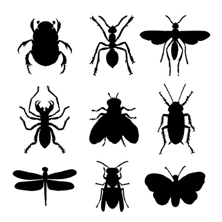 昆虫動物アイコンフラット孤立黒いシルエットバグアリバタフライスパイダーベクトル  イラスト・ベクター素材