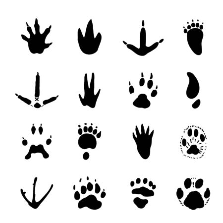 Set of Animal Spoor Footprints element Icon Vector illustration.