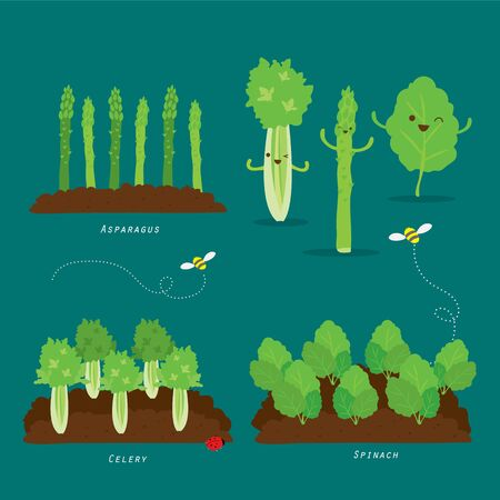 Set of Vegetable garden. Organic and healthy food Cartoon Vector illustration.