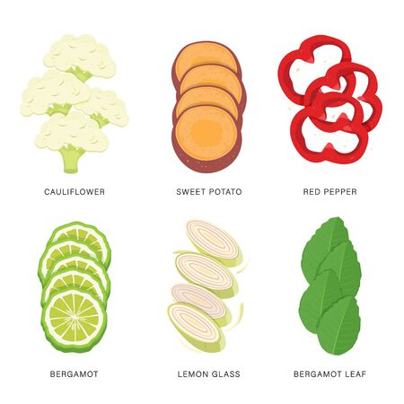 Set of Vegetable Slices. Organic and healthy food isolated element Vector illustration.