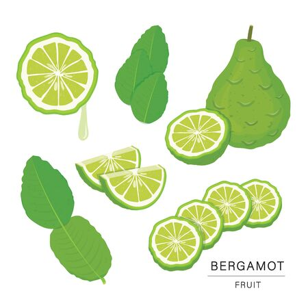 Set of Bergamot Fruit Slices. Organic and healthy food isolated element Vector illustration. Ilustracja
