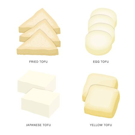 Set of Fresh Tofu and Bean Curd Slices. Organic and healthy food isolated element Vector illustration.