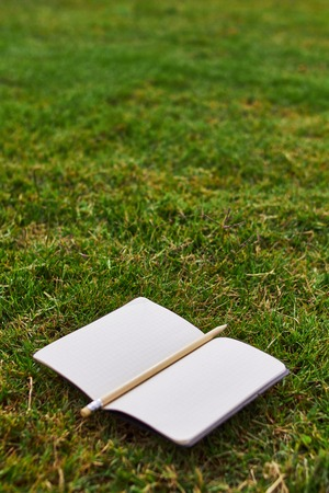 notebook and pencil on the grass in a park