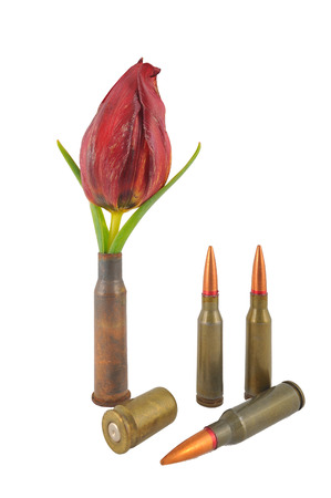 similarity: sleeve with a flower and three ordinary bullets