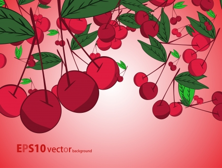Cherry  background Stock Vector - 17148325