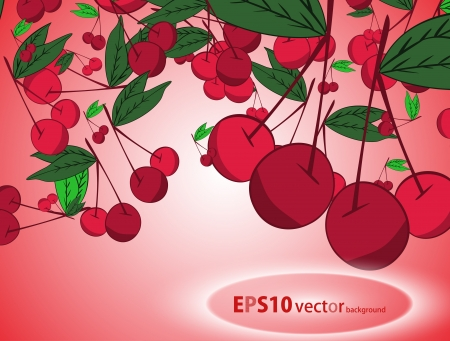 Cherry  background Stock Vector - 17148338