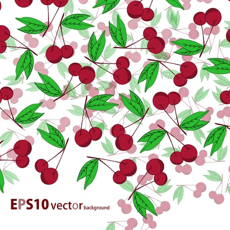 Cherry  background Stock Vector - 17148340