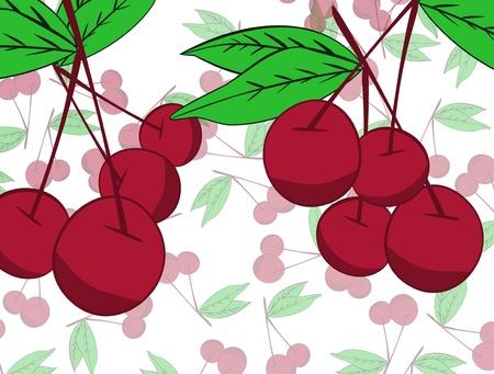 Cherry  background Stock Vector - 17148332