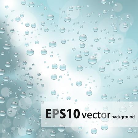 water drops Stock Vector - 17672985