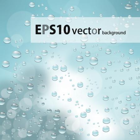 water drops Stock Vector - 17673142