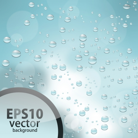 water drops Stock Vector - 17703050