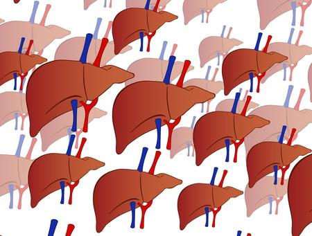 foie humain: fond foie humain Illustration