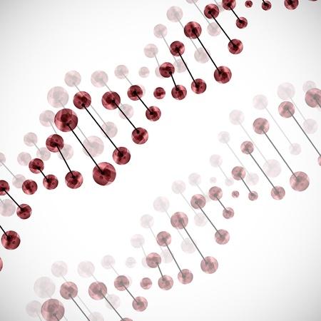encoded: DNA molecule