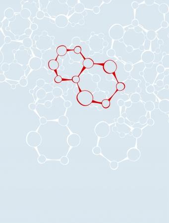 macromolecule: DNA molecule