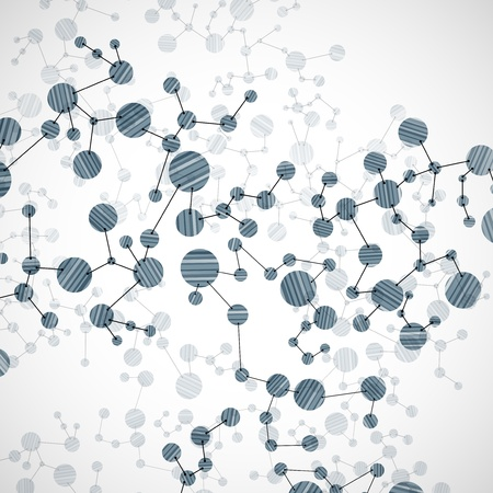 bases: DNA molecule