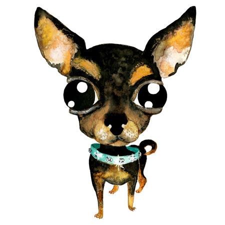 collarin: Vector dibujado a mano acuarela chihuahua linda. Pequeño perro en collar con pastas. Dibujo sobre fondo blanco. Vectores