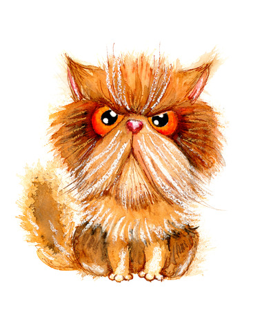 Hand drawn watercolor illustration without tracing. Grumpy persian cat. Ideal for postcards, gift tags and other printed stuff. Stock Photo