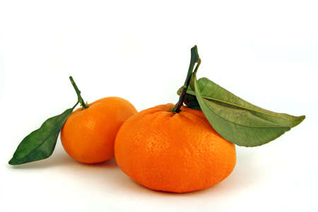 a pair of fresh mandarin oranges with stems and green leaves 스톡 콘텐츠