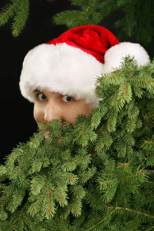 christmas girl in a santa hat peeking from behind fir tree branches