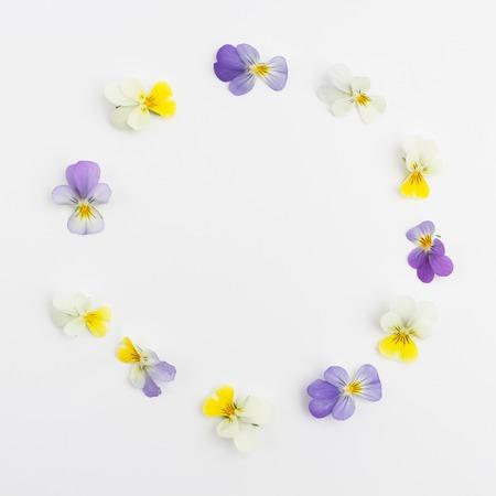 Frame from violets. Greeting cards. Violets background. Flower frame