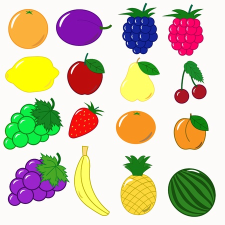 Früchte set vektor