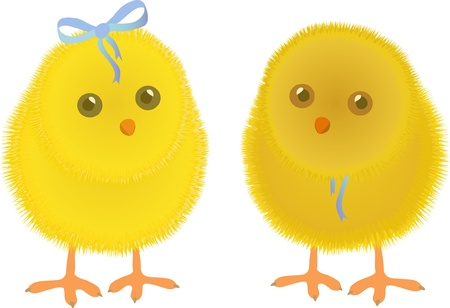 chick: two Chicken, Easter, spring, baby, bird, nature, carton, character, vector illustration