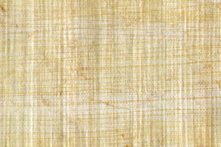 背景として使用するためにパピルス紙のテクスチャ。 写真素材 - 44219764