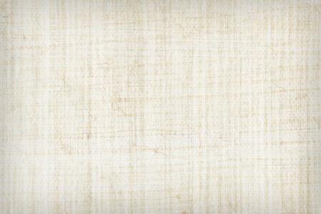 papyrus: Texture of papyrus paper to use as a background. Stock Photo
