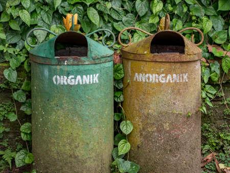 Organic and Anorganic waste