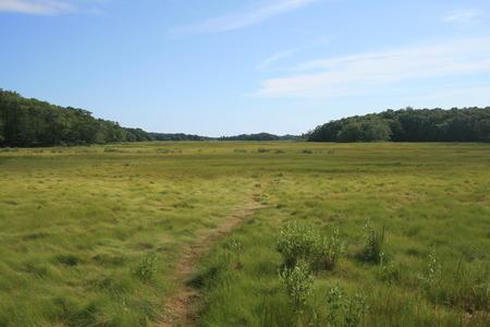 landschap schot