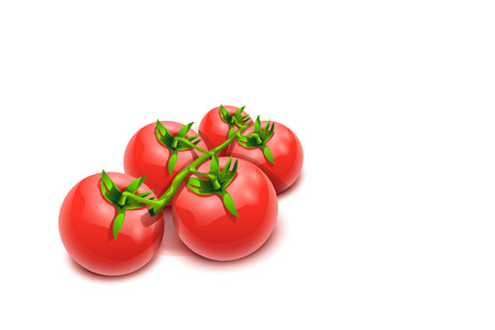 illustration of some tomatos lying on white background with shadows Ilustração