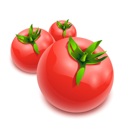 wet wood: Illustration of few tomatoes on white background in the line