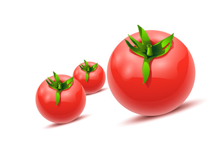 illustration of three tomatoes on white with soft shadows Ilustração