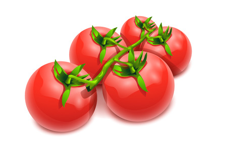 illustration of group tomatoes on white background Zdjęcie Seryjne - 39239707
