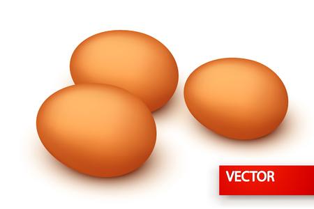 lying in: illustration of few eggs in group lying on white background Illustration
