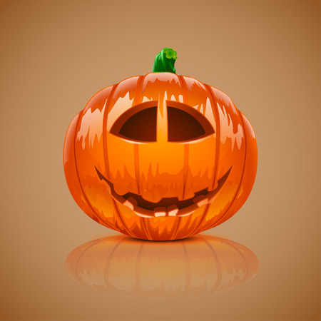 reflect: illustration of realistic pumpkin with shadow and reflect