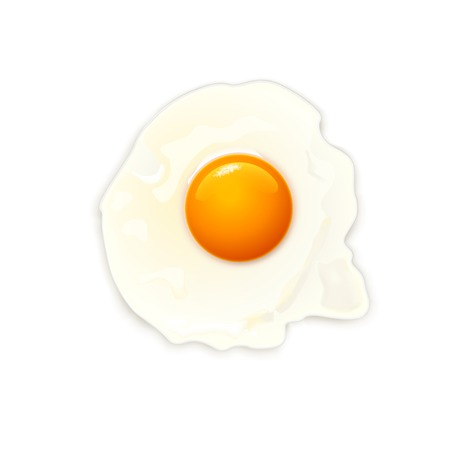 cooked: illustration of cooked egg on white  back ground