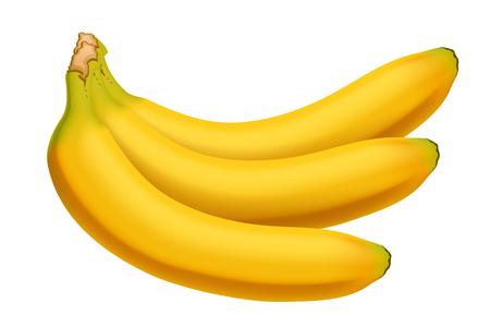 few: illustration of group of few bananas on white background Illustration