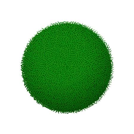 illustration of green grass ball on white background