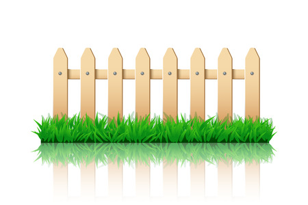 hedge: illustration of wooden fence on green grass with reflection on white background