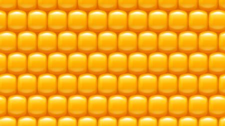 husk: illustration of realistic gold color corn background Illustration