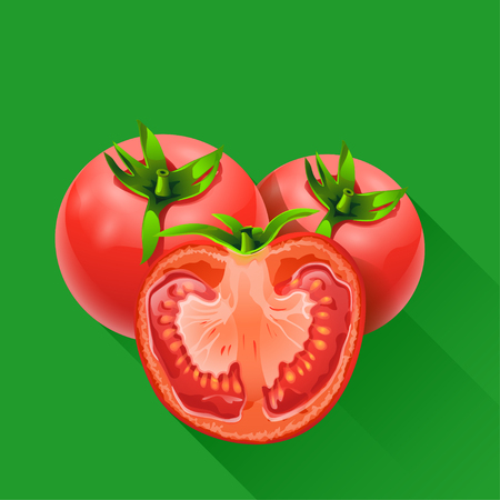 few: illstration of few tomatoes on green background with shadow