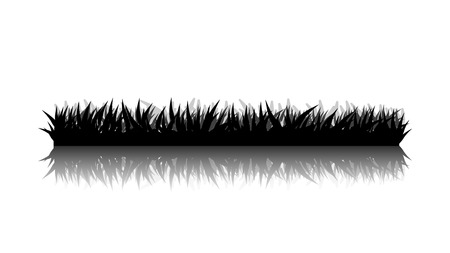 illustration of black silhouette grass on white background with reflection
