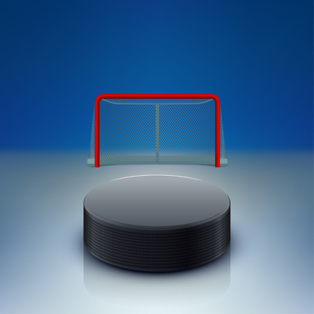 puck: hockey puck and gates Illustration