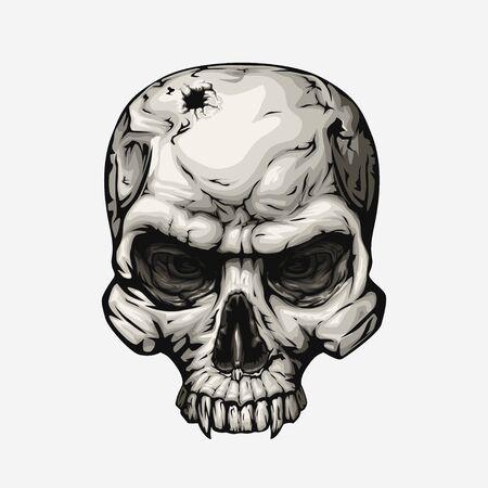 human skull front on white 向量圖像