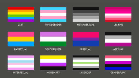set simple sexual and gender colorful flags Ilustracja