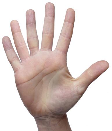 Mano con 6 dedos aislados en blanco