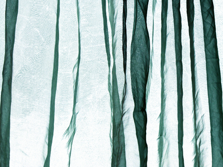 voile: Voile curtain background green