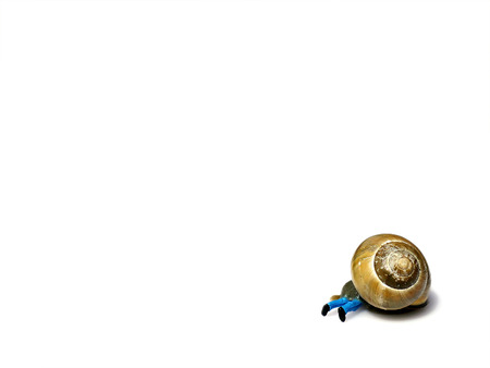 overrun: Miniature man overrun by snail isolated on white. Business concept Stock Photo